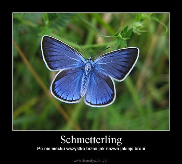 Schmetterling - nazwa broni