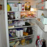 der Kühlschrank - lodówka