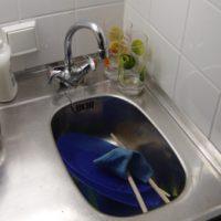 das Spülbecken - zlew