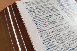 Anglicyzmy i zapożyczenia w języku niemieckim.